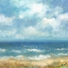 Jūras zilgme_006